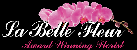 La Belle Fleur - Award Winning Interflora Florist, Wedding Florist in Leitrim, Roscommon, Sligo,  Longford, Cavan, Wedding Flowers, Wedding Decor, Wedding Hire, Cherry Blossom Tree Hire,Event Styling, Event Decor, Kilronan Castle, Lough Rynn Castle, Markr - Carnation & Germini Teardrop Spray Pink Standard